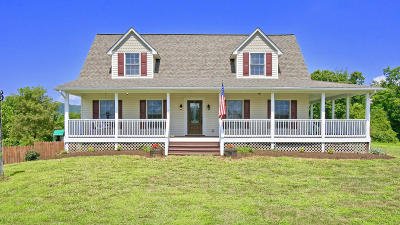 Pittsylvania County Single Family Home For Sale: 8112 Grassland Dr
