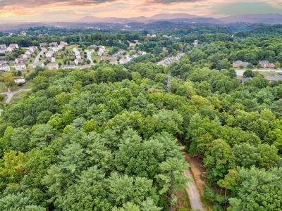 Residential Lots & Land For Sale: Longview Rd