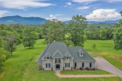 Bedford County Single Family Home For Sale: 4829 Dickerson Mill Rd