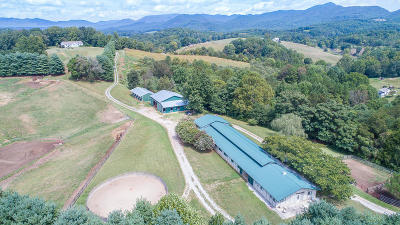 Botetourt County Single Family Home For Sale: 9191 Springwood Rd