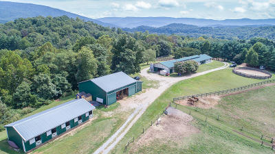 Buchanan VA Farm For Sale: $997,750