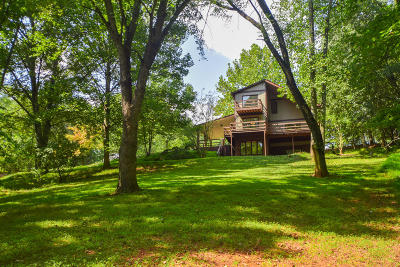 Bedford County, Franklin County, Pittsylvania County Single Family Home For Sale: 25 Lilly Ln