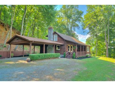 Franklin County Single Family Home For Sale: 17385 Virgil H Goode Hwy