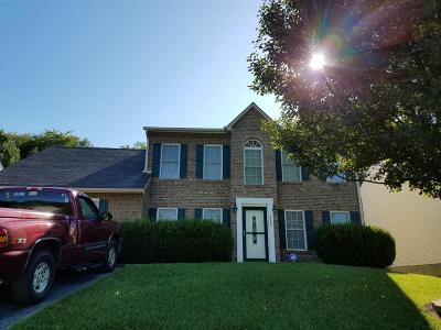 Roanoke Single Family Home For Sale: 4865 Horseman Dr NE