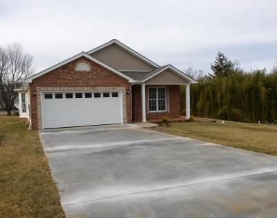 Roanoke County Single Family Home For Sale: 1040 Big Ben Dr