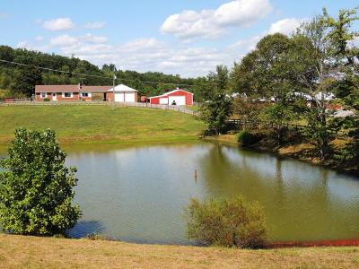 Bedford County Farm For Sale: 8055 Stewartsville Rd
