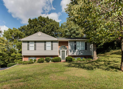 Roanoke County Single Family Home For Sale: 1910 Deyerle Rd SW