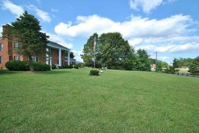 Moneta Single Family Home For Sale: 2631 Meadors Spur Rd