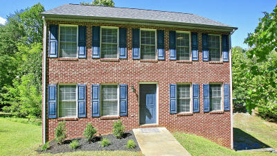 Bedford County Single Family Home For Sale: 310 Club House Dr