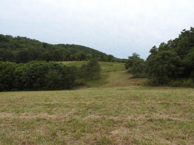 Vinton Residential Lots & Land For Sale: 1019 Lauderdale Ave
