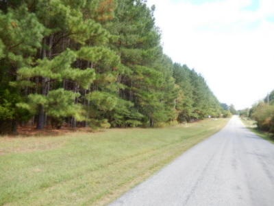 Bedford County Residential Lots & Land For Sale: Stone Mountain Rd