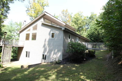 Roanoke County Single Family Home For Sale: 6717 Raintree Rd