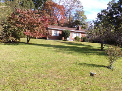 Moneta Single Family Home For Sale: 14572 Booker T Washington Hwy #& 14576