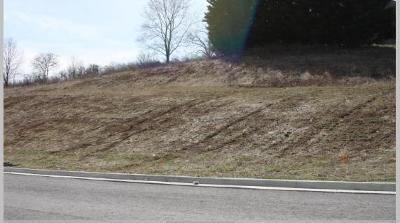 Residential Lots & Land For Sale: Lot 18 Ridgley Ln