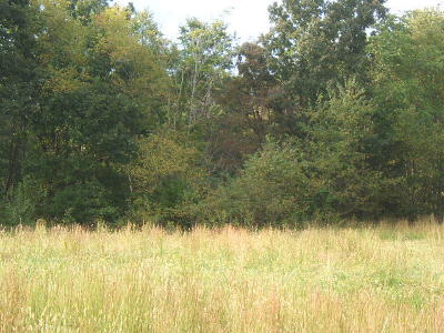 Residential Lots & Land For Sale: Lot 76 Virginia Ridge Dr