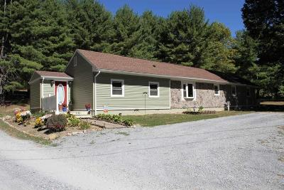 Botetourt County Single Family Home For Sale: 1181 Villamont Church Rd