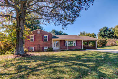 Bedford County Single Family Home For Sale: 1704 North Hills Dr