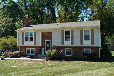 Troutville Single Family Home For Sale: 193 Fairfield Ln