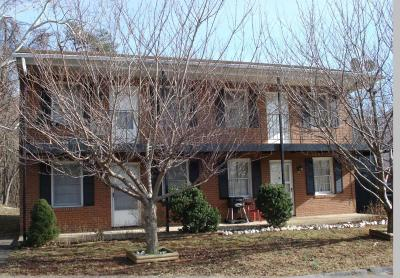 Botetourt County Multi Family Home For Sale: 12 Culpepper Ave #& 30 & 2