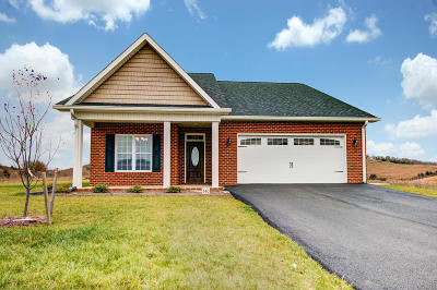 Botetourt County Single Family Home For Sale: 340 Settlers Rd