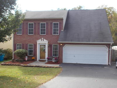 Roanoke County Single Family Home For Sale: 4870 Horseman Dr NE