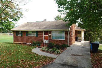 Roanoke Single Family Home For Sale: 4435 Holmes St