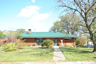 Roanoke County Single Family Home For Sale: 7917 Carvin St