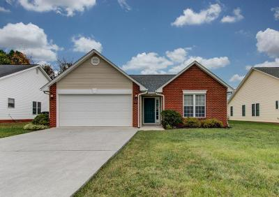 Roanoke County Single Family Home For Sale: 930 Harmon Cir