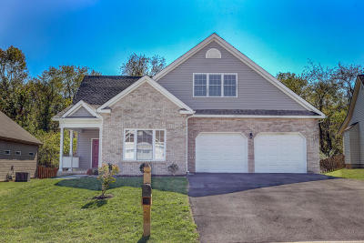 Roanoke Single Family Home For Sale: 2706 Cottage Rose Ln
