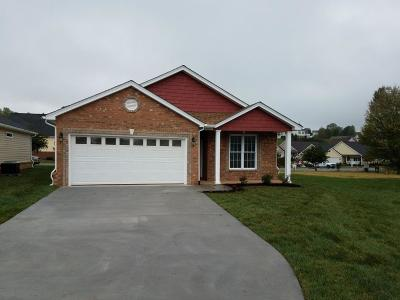 Roanoke County Single Family Home For Sale: 1030 Big Ben Dr