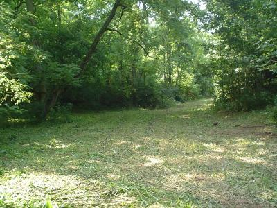 Buchanan Residential Lots & Land For Sale: Lithia Rd