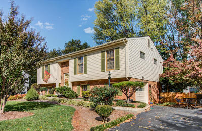 Roanoke Single Family Home For Sale: 3819 Hyde Park Dr