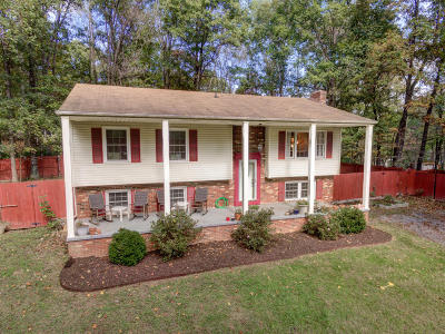 Blue Ridge Single Family Home For Sale: 336 Stratford Dr
