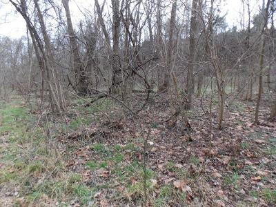 Roanoke City County Residential Lots & Land For Sale: Salem Turnpike NW
