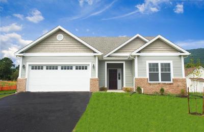 Roanoke Single Family Home For Sale: 2912 Golden Ivy Dr
