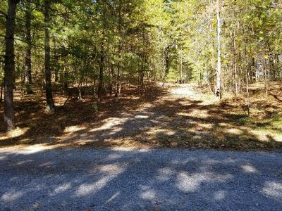 Blue Ridge Residential Lots & Land For Sale: Paradise Haven Trl