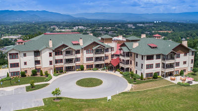 Roanoke County Attached For Sale: 5470 The Peaks Dr #307