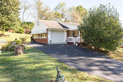 Botetourt County Single Family Home For Sale: 116 Beachview Ln