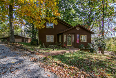 Bedford County Single Family Home For Sale: 1317 Raspberry Branch Ln