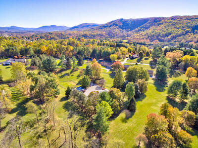 Botetourt County Single Family Home For Sale: 952 Glebe Rd