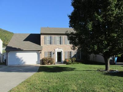 Roanoke County Single Family Home For Sale: 4861 Golfview Dr NE