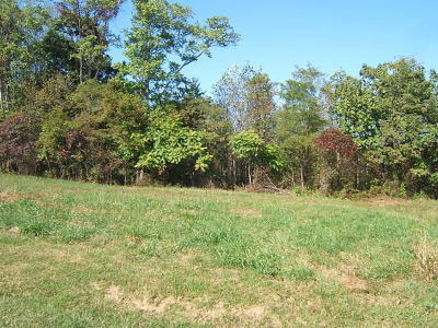 Residential Lots & Land For Sale: Lot 8 Savanna Hills Dr