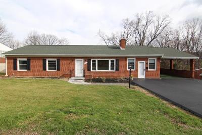 Roanoke County Single Family Home For Sale: 1140 Halliahurst Ave