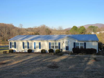 Bedford County Single Family Home For Sale: 102 Peakswood Dr