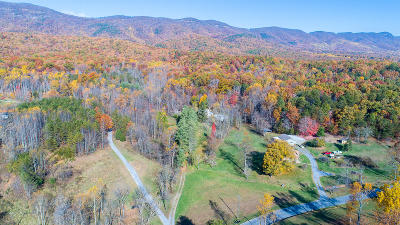 Blue Ridge Residential Lots & Land For Sale: 1043 Ole McGuire Rd