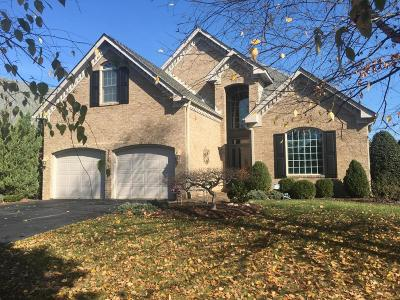 Roanoke Single Family Home For Sale: 3370 Southwood Village Ct