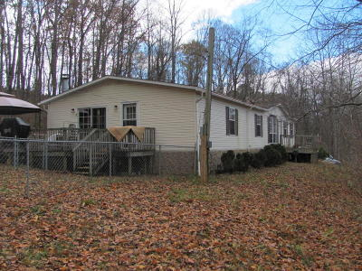 Botetourt County Single Family Home For Sale: 1179 Old Sessler Mill Rd