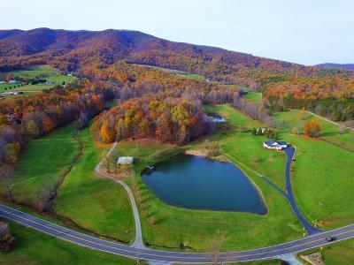 Boones Mill Single Family Home For Sale: 5609 Bethlehem Rd