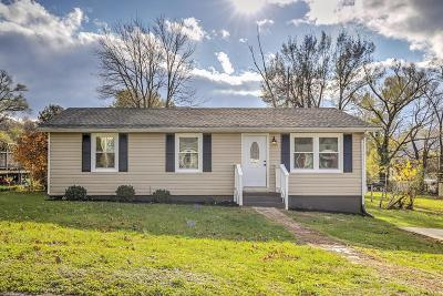 Roanoke Single Family Home For Sale: 1719 Gordon Ave SE
