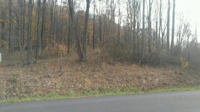 Roanoke County Residential Lots & Land For Sale: Chestnut Mountain Dr